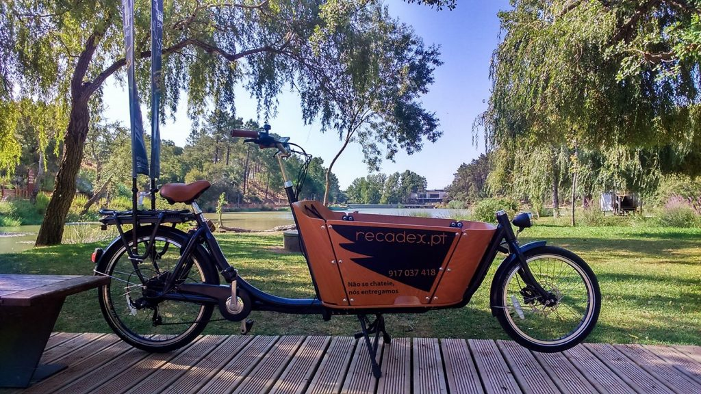 bicicletarecadex echoboomer