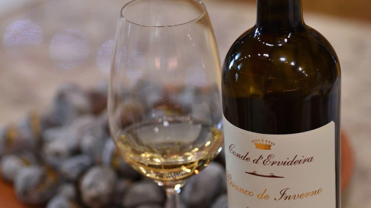Novo vinho da Ervideira