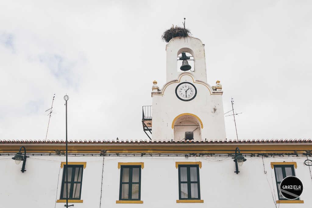 Terras sem Sombra 2020 - Barrancos