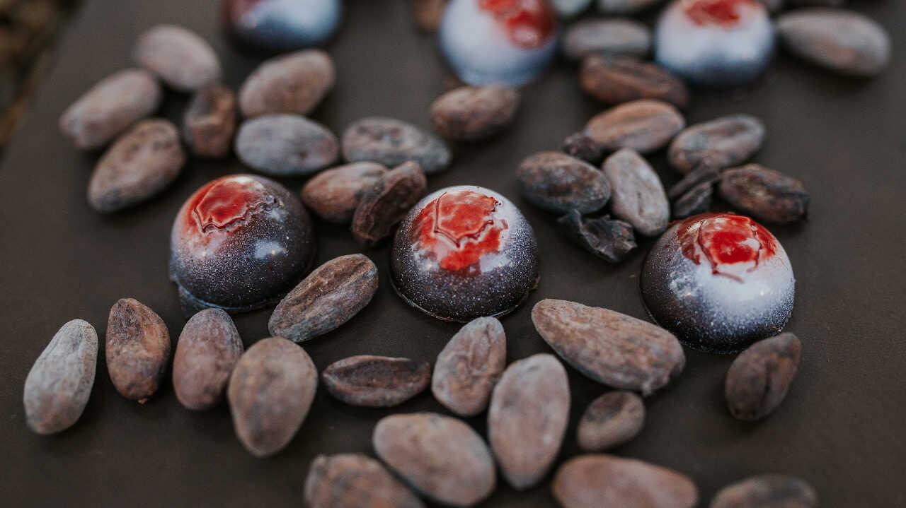 Companhia Portugueza do Chocolate