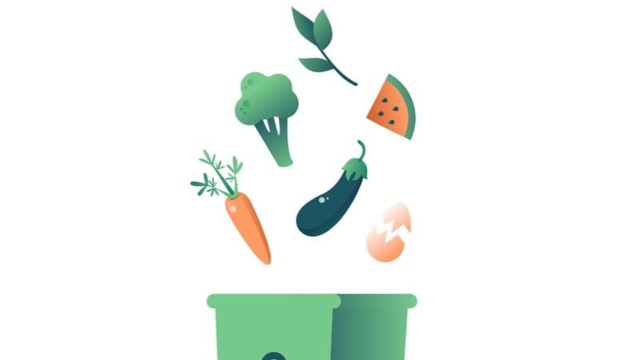 Too Good To Go - desperdício alimentar