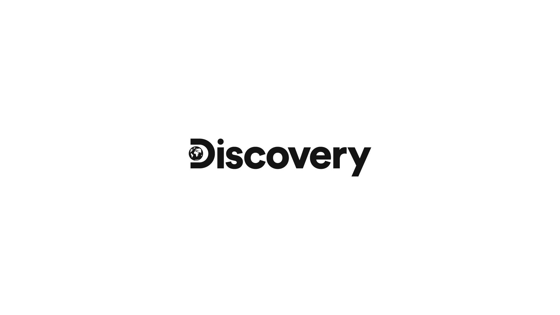 Grupo Discovery