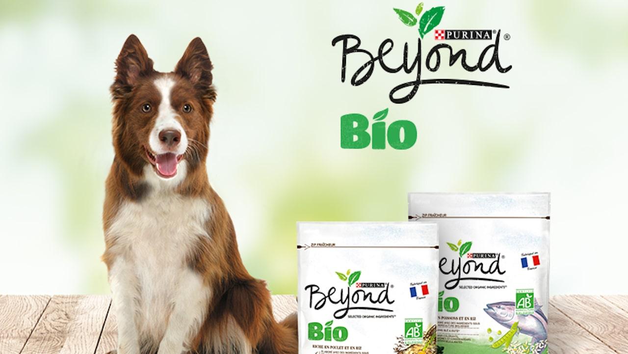 Beyond Bio