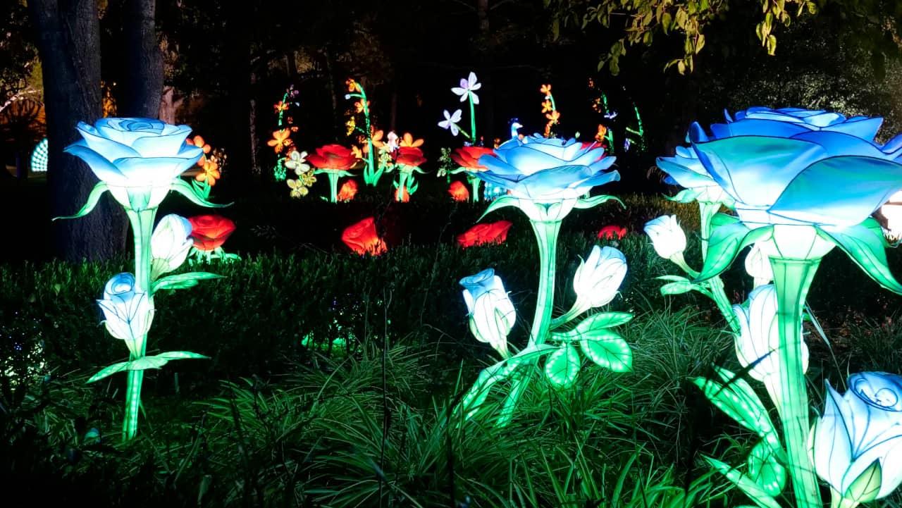 Jardim Botânico Tropical de Belém - Magical Garden
