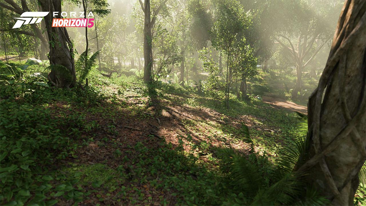 forza horizon 5 bioma 0007 selva