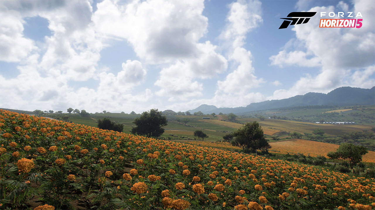 forza horizon 5 bioma 0008 zonas de cultivo